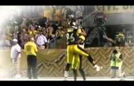 Exclusive: LEAKED Hines Ward Farewell Tribute