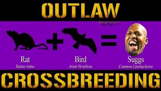 Ravens / Outlaw Crossbreeding